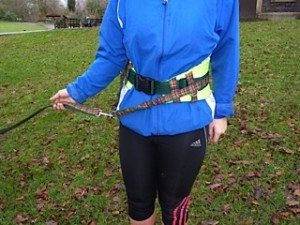 A padded waist belt for the owner