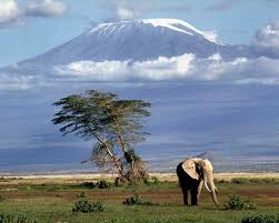 Kilimanjaro is the highest peak in Africa