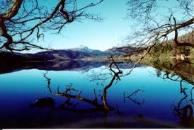 Funny how all the pics of Loch Ard are of a still and beautiful day! Not so last night!