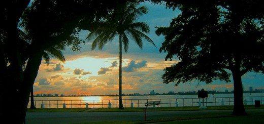 Miami sunrise. Pic credit: Alex de Carvalho on Flickr