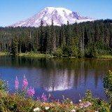 Rainier National Park. Pic credit Wiki Commons