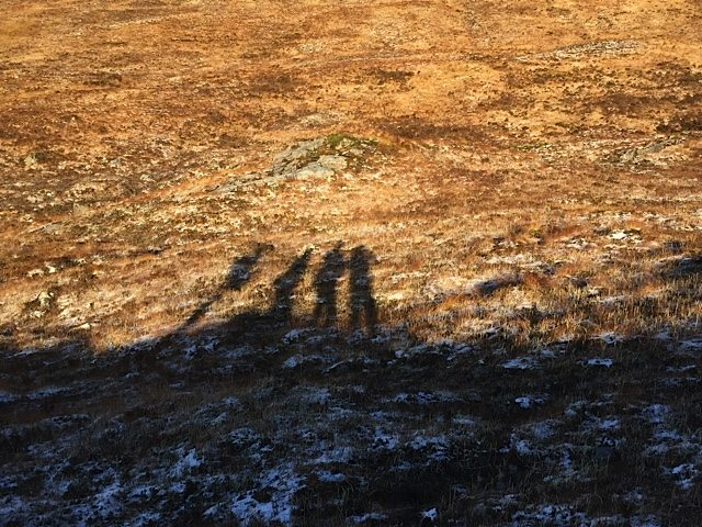 Shadows of four walkers.
