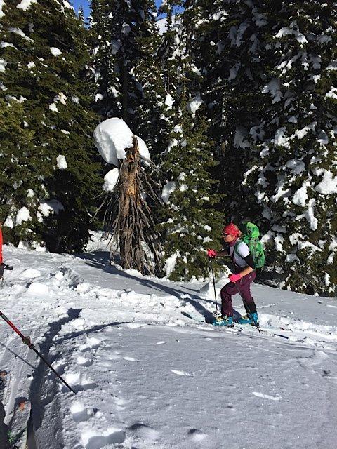 Ski touring in Bergans of Norway Osatind pants