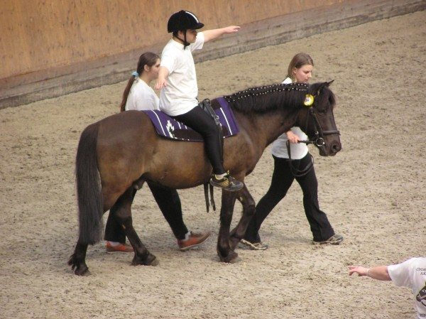 Therapeutic horse riding session.