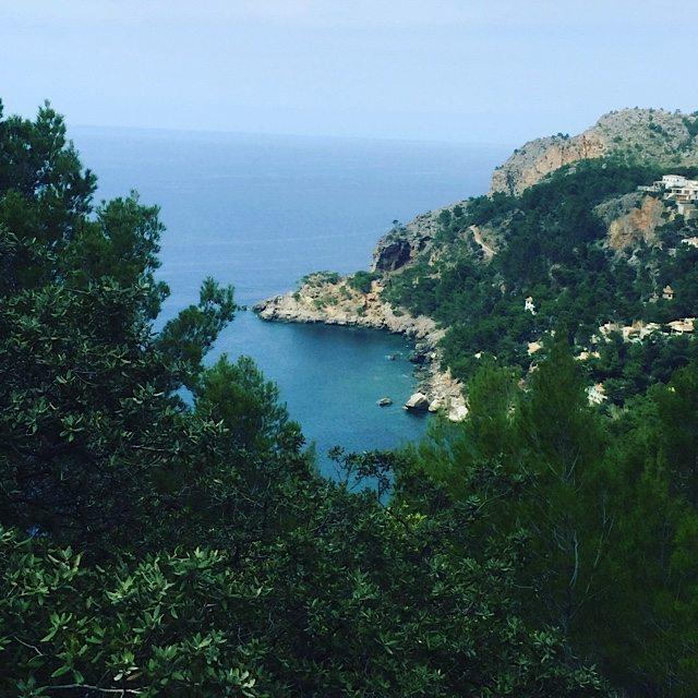 We were treated to amazing coastal views.