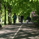 Cycling in Rouken Glen (1)