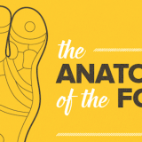 Screen Shot 2016-08-22 at 16.24.48