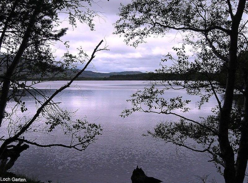 Loch Garten. Credit: Brian Gillman.