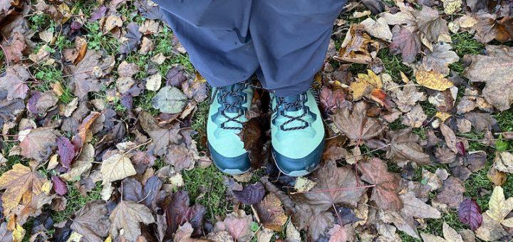 Salomon Vaya Mid GTX walking boot