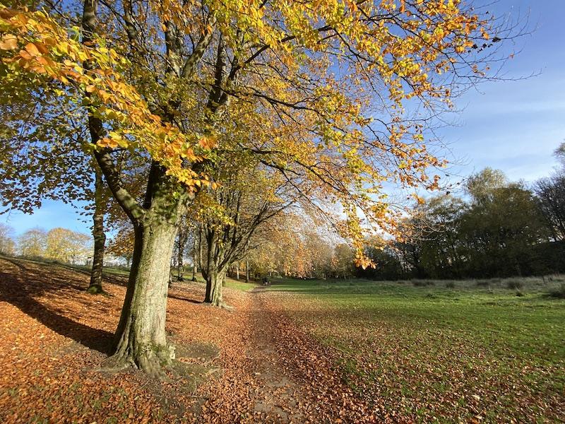 milngavie walk to kilmardinny loch